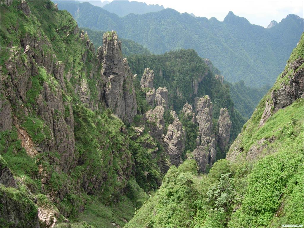 使神农架成为中国南北植物种类的过渡区域和众多动物繁衍生息的交叉