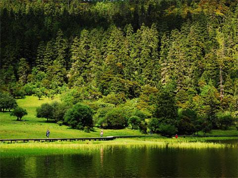 云南香格里拉普达措国家公园