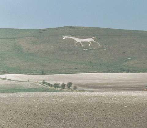 英国威尔特郡白马刻像