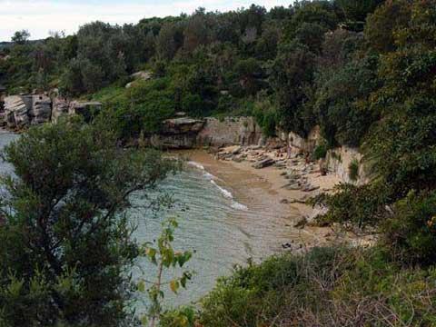 澳大利亚悉尼的裸体浴场