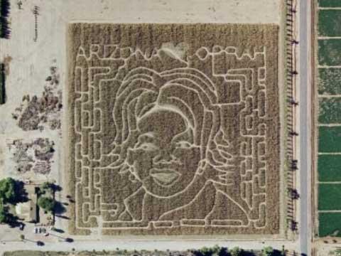 奥普拉迷宫