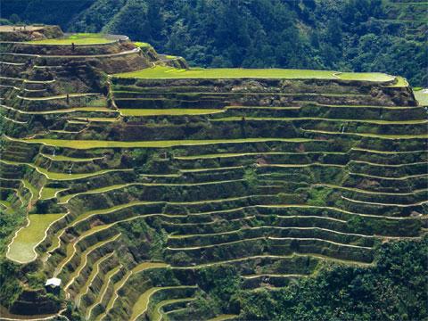 菲律宾巴拿威梯田