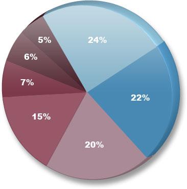 影响搜索引擎排名的因素2009版