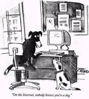 图1 《在网上,没人知道你是一条狗》
