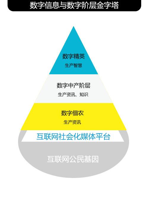 数字信息与数字阶层金字塔