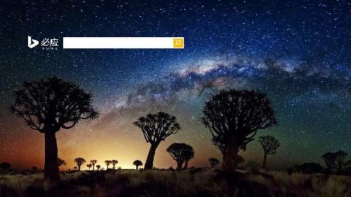 箭袋树林上空的银河
