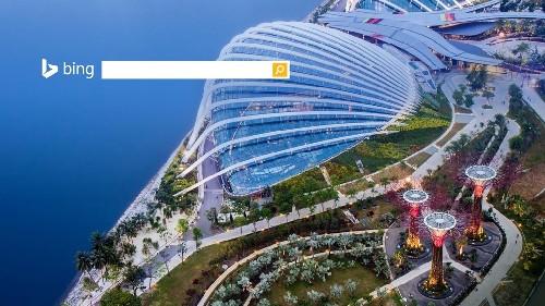 新加坡滨海湾花园和园中的超级树