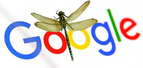 """谷歌针对中国研发的""""蜻蜓""""搜索引擎项目终止 第2张"""